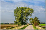 Just A Country Road 2 by corngrowth, photography->landscape gallery