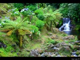 Azores Waterfall by nigel_inglis, Photography->Waterfalls gallery