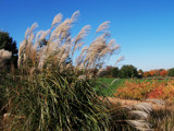 """October's Bright Blue Skies"" by trixxie17, Photography->Landscape gallery"