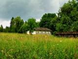 Back Home by roxanapaduraru, photography->gardens gallery