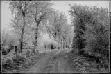 Wint'ry Countryside (B&W) by corngrowth, contests->b/w challenge gallery
