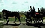 Life i s a journey by rozem061, photography->transportation gallery