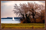 Lake of Veere 20 by corngrowth, photography->shorelines gallery