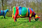 Dutch cows by rozem061, photography->sculpture gallery