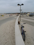 The Beach, the bicycle and the dog by apofix, Photography->General gallery