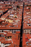 Florence from on top of the Duomo by Aneirin, Photography->Architecture gallery