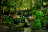 Fairy glen by biffobear, photography->landscape gallery