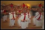 Kandyan dancers.. by Ravindra077, Photography->Action or Motion gallery