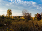 Prairie Fall by Pistos, photography->nature gallery