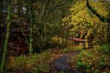 Believe by biffobear, photography->landscape gallery