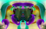Hymenium Feedback by Flmngseabass, abstract gallery