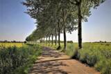 Groninger Landscape by rozem061, photography->landscape gallery