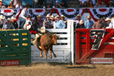 Pendleton Roundup 2 by jeenie11, photography->action or motion gallery