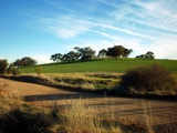 Mintaro Road by sshrive, photography->landscape gallery