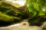 I know by biffobear, photography->mills gallery