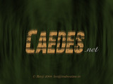 Caedes by renji, caedes gallery