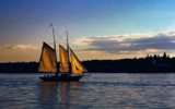 Golden Sails by cynlee, photography->boats gallery