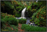 Hindhope Untouched by biffobear, Photography->Waterfalls gallery
