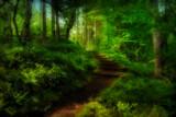 In Dreams by biffobear, photography->landscape gallery