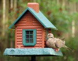 """""""I think I need a bigger porch!"""" by Jimbobedsel, photography->birds gallery"""