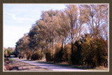 Walcheren Country Roads & Paths 13 by corngrowth, Photography->Landscape gallery