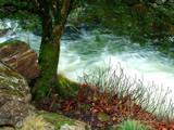 Flow by jma55, Photography->Landscape gallery