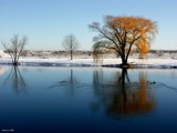 After the Snowfall by jojomercury, Photography->Shorelines gallery