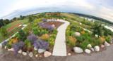 Sonali's Garden by Nikoneer, photography->photojournalism gallery