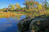 Louisville Swamp by Silvanus, photography->landscape gallery