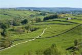 Winding Path by slybri, Photography->Landscape gallery