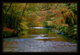 The River Plym No 2 by sasraku, Photography->Landscape gallery
