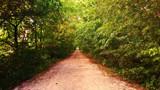 Dedication Trail by galaxygirl1, photography->landscape gallery