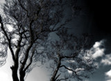 Blue Skies by rvdb, photography->skies gallery