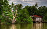 Bayou Camp with X-Large Pool by 100k_xle, photography->landscape gallery