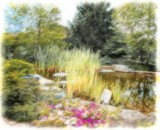 Impressions at the Pond by trixxie17, photography->manipulation gallery