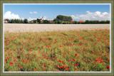 Hidden Village by corngrowth, Photography->Landscape gallery