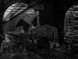 Horse by rvdb, contests->b/w challenge gallery