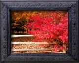 Somebody Framed Me by jojomercury, Photography->Landscape gallery