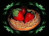 Three Strawberries by mesmerized, photography->manipulation gallery