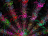 The Dilly Circus by jswgpb, Abstract->Fractal gallery