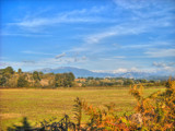 Pastoral view by Ed1958, photography->landscape gallery