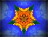 Sunflower Kaleidoscope by ccmerino, Photography->Manipulation gallery