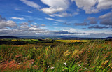 Cheviot by biffobear, photography->landscape gallery