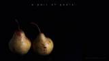 A pair of pears by coram9, photography->still life gallery