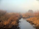 Fog over wetlands by hamellr, photography->landscape gallery