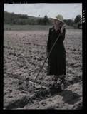 Farming 1935-1942 by rvdb, photography->manipulation gallery