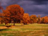Alabama Country Side by SatCom, Photography->Landscape gallery