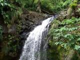 Mt. Carmel Waterfall by jrasband123, Photography->Waterfalls gallery