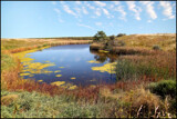 Cross Ranch Wetlands by Nikoneer, photography->water gallery