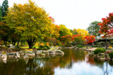Color Combinations by Ramad, photography->gardens gallery